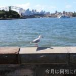 対岸からシドニー・オペラハウスを眺める絶景ポイント